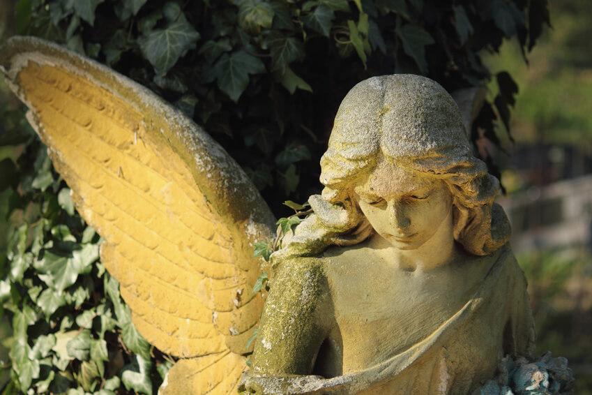 Wissenswertes Engel